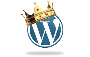 why i choose wordpress