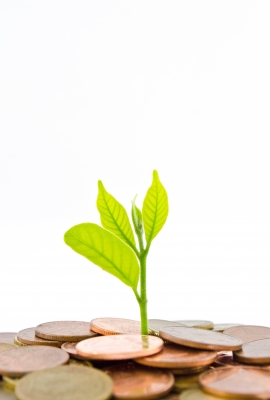 5 Unconventional Investment Ideas