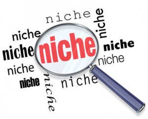 Explore New Ways To Start Niche Business