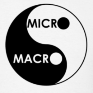 Micro Manager, Macro Manager or Situational Manager