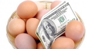Personal Finance Why you Need your Eggs in More than One Basket