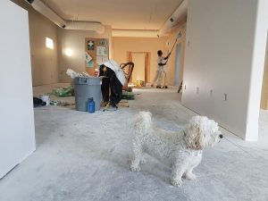 How Frugal Families Save on Common Home Repairs