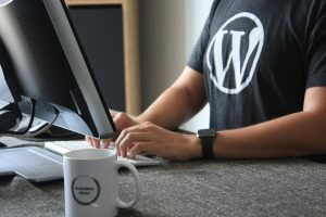 5 Best Tips for WordPress Developers