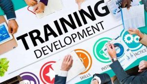 Why You Should Keep Training Your Sales Team