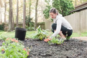 How Gardening Can Save You Money